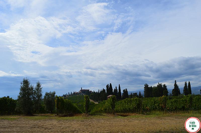 Vinhos da Toscana Itália Estradas de vinhos na Toscana Itália