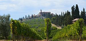 Tour degustação de vinho chianti brunello di montalcino e cidade da toscana