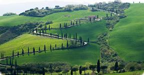 Tour pela Toscana Chianti e Siena degustação de vinho Toscano