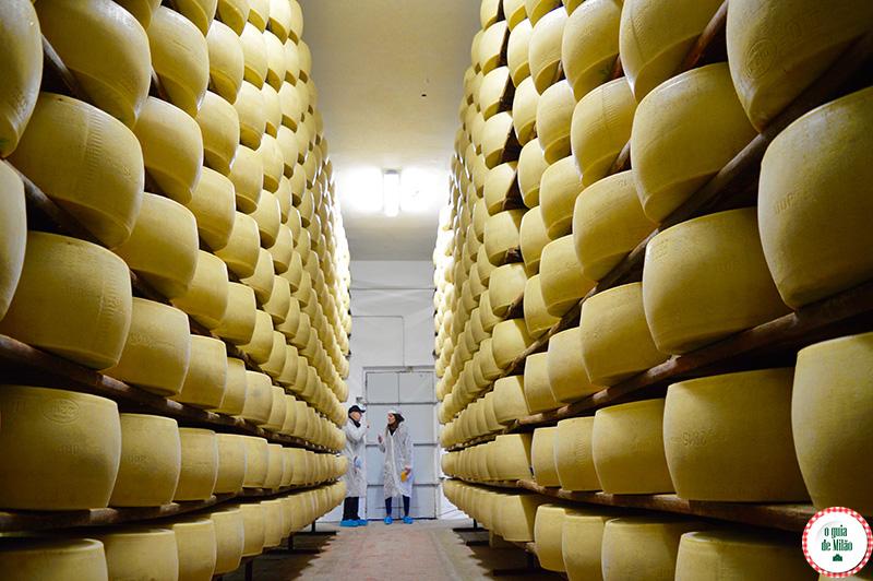 Conheça o Parmigiano Reggiano um dos melhores queijos da Itália