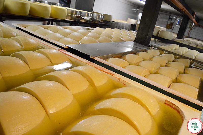 Conheça o Parmigiano Reggiano