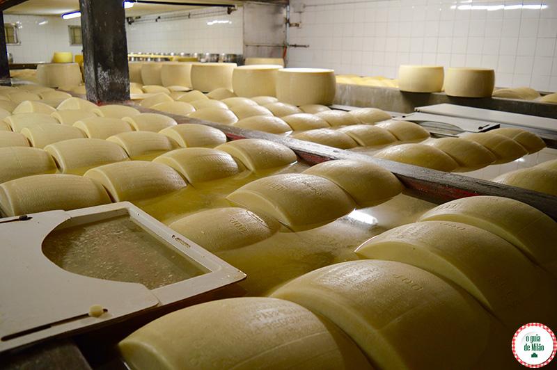 Conhecendo a produção do Parmigiano Reggiano na Itália em Parma