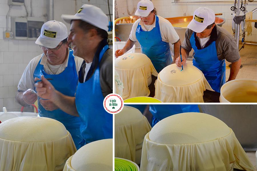 Parmigiano e parmesão