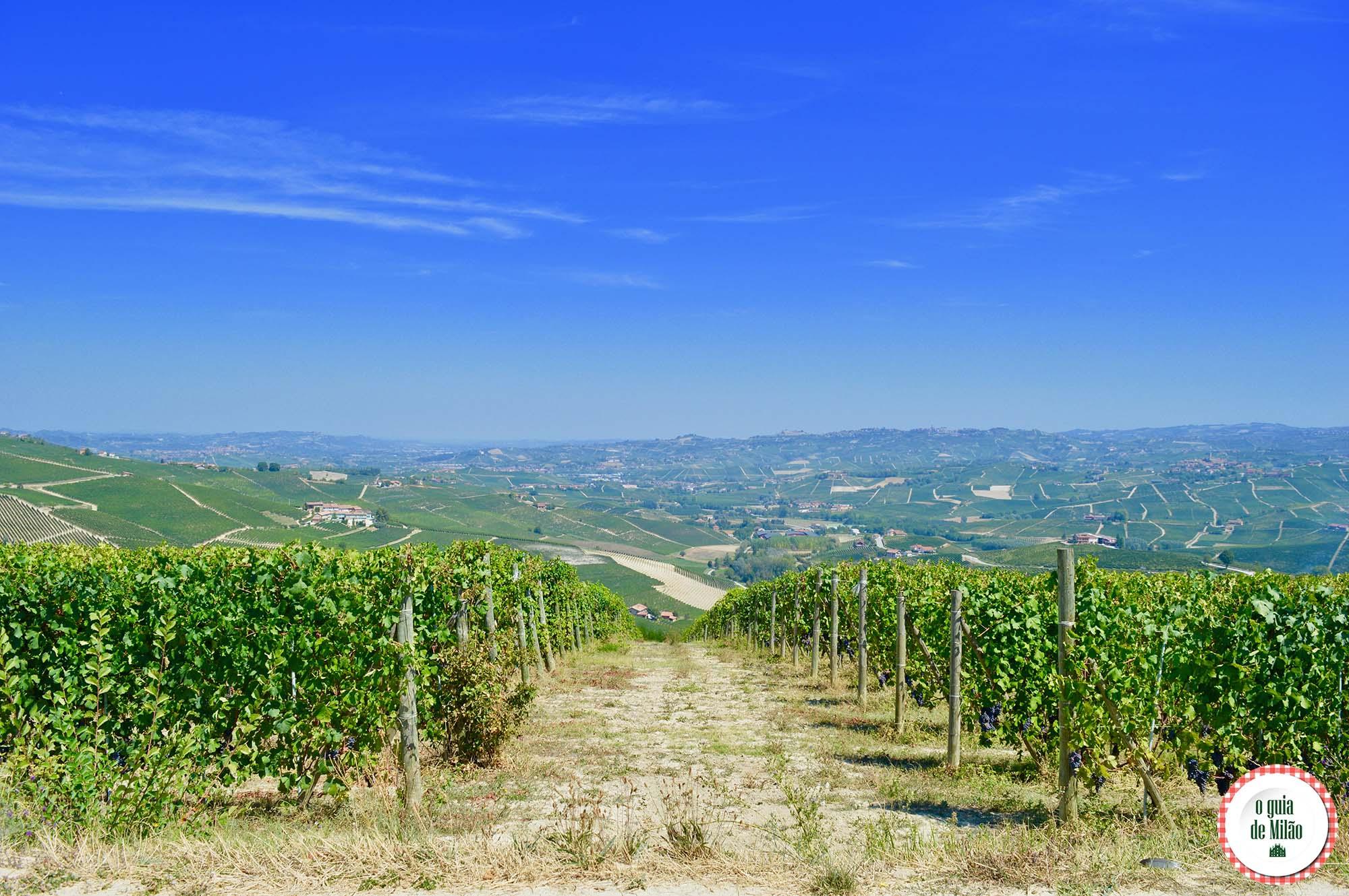 Asti e Barolo Itália: excelentes vinhos, rica gastronomia e paisagens deslumbrantes